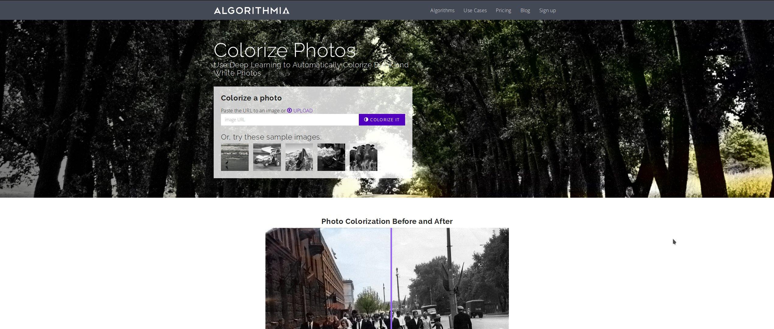 Algorithmia раскрашивает чёрно-белые фотографии